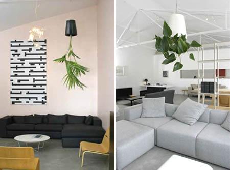 дизайн помещений озеленение